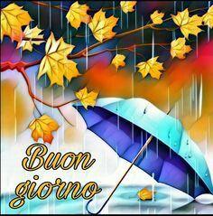 Buongiorno Autunno Pioggia Buongiorno Divertente Buongiorno Buongiorno Immagini