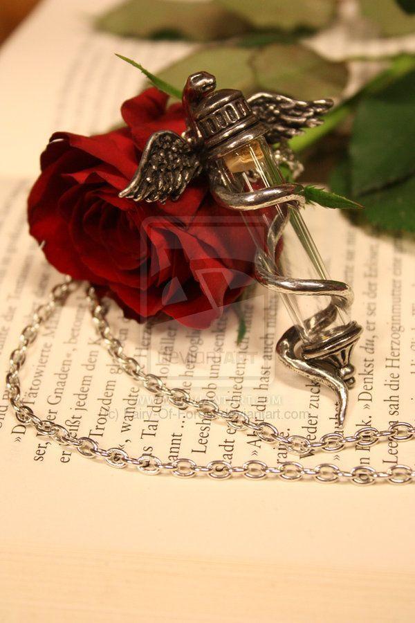 Love Red Roses Beautiful Roses Love Rose
