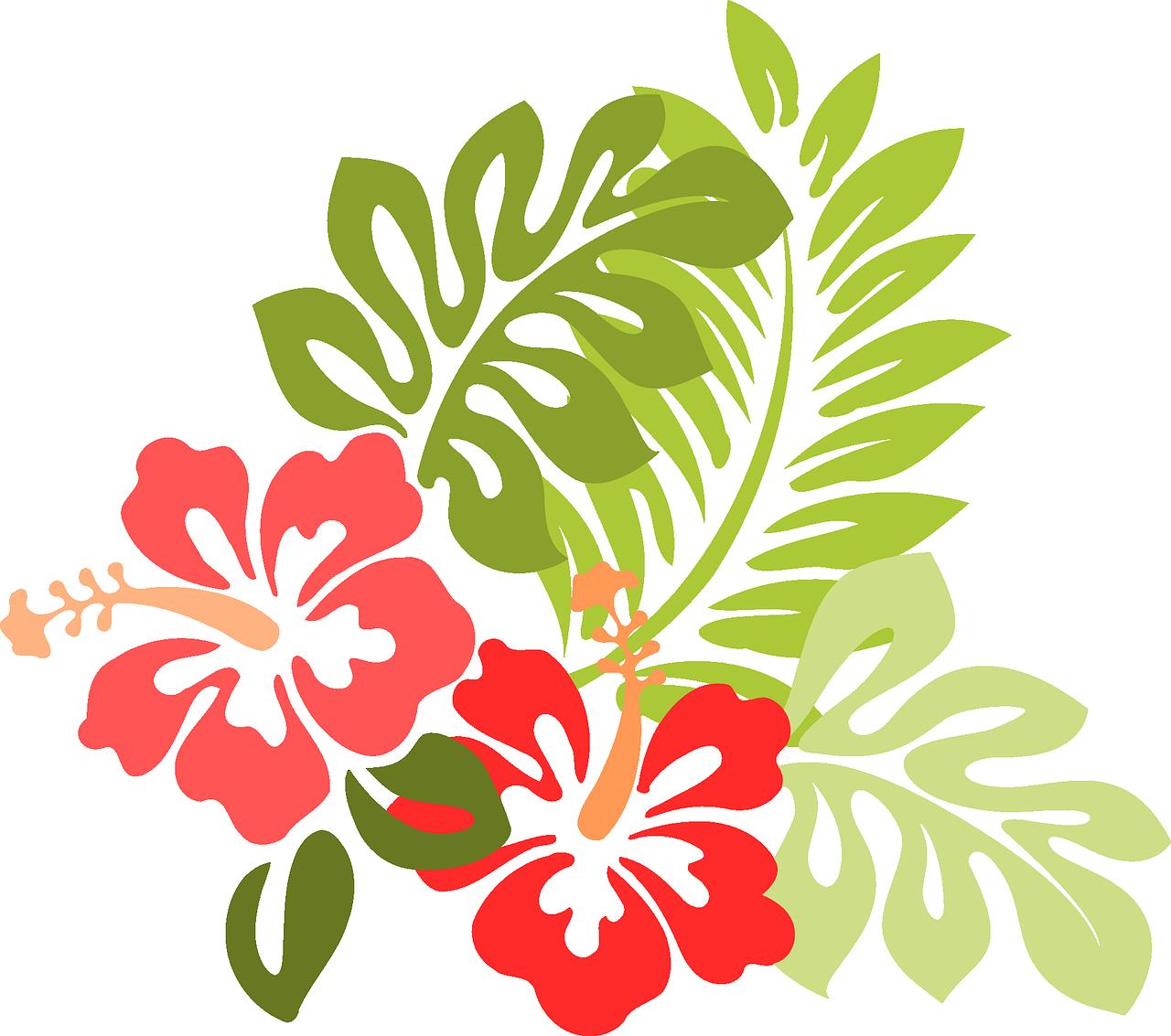 Image Gratuite Sur Pixabay Hibiscus Fleur Feuilles 2