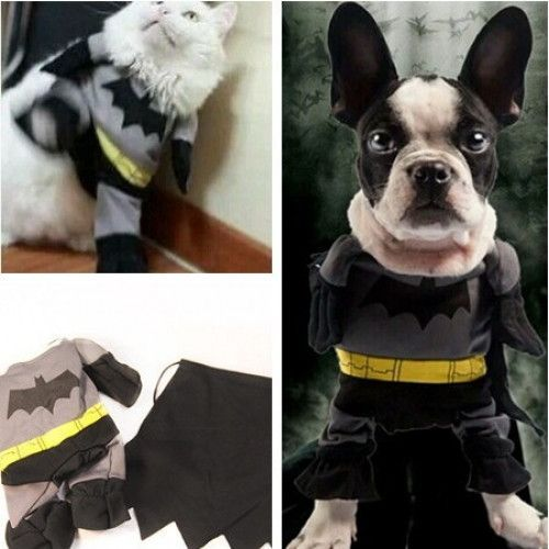 Batman Pet Costume for Small Dogs and Cats & Batman Pet Costume for Small Dogs and Cats | Yorkshire Terrier ...
