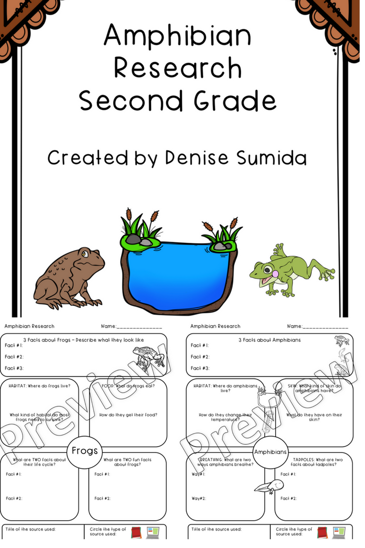 medium resolution of Second Grade Amphibian Research Worksheets   Amphibians