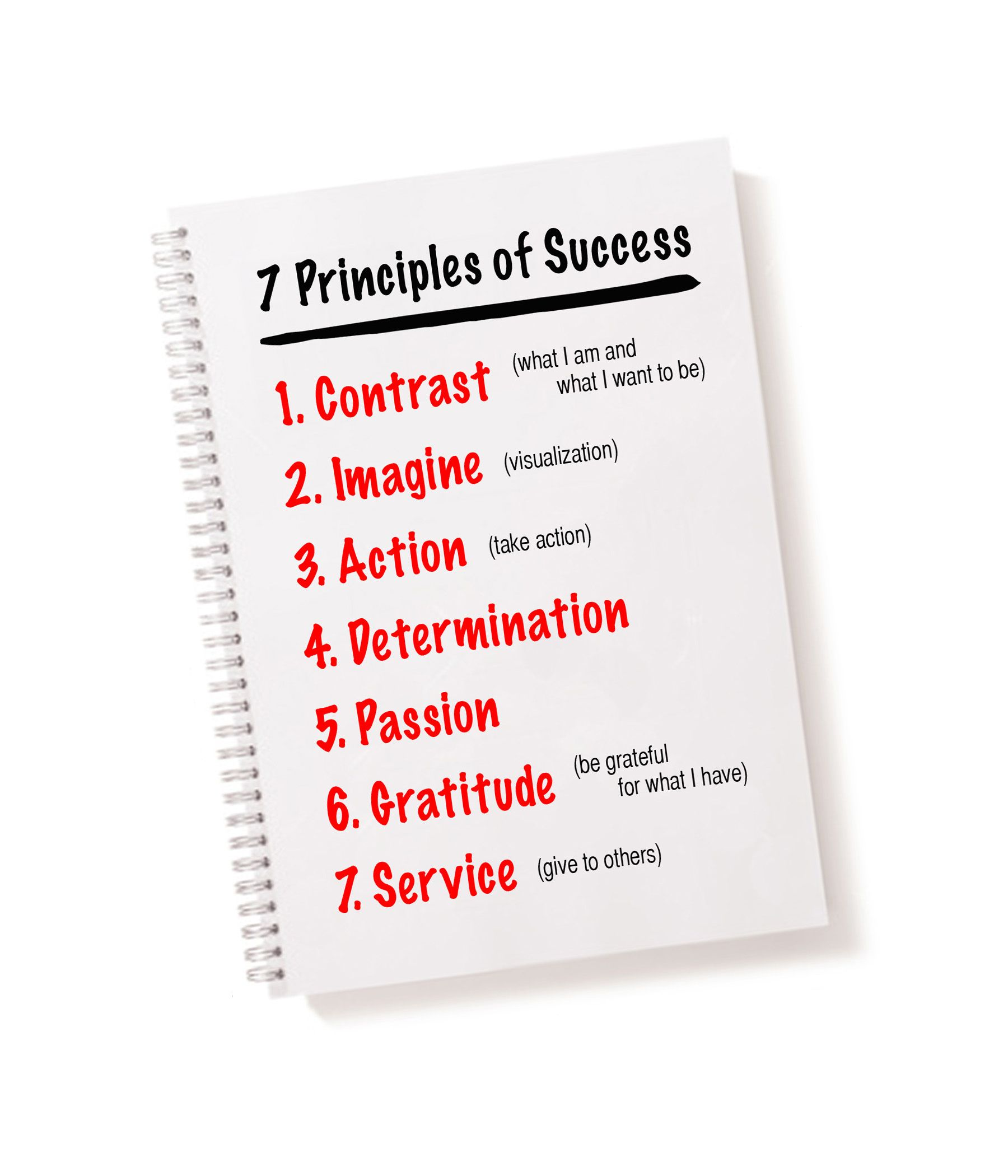 7 Principles of Success