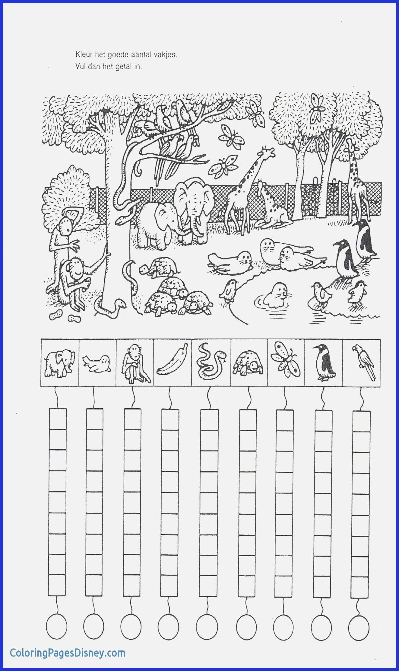 Worksheets For Preschool For Download
