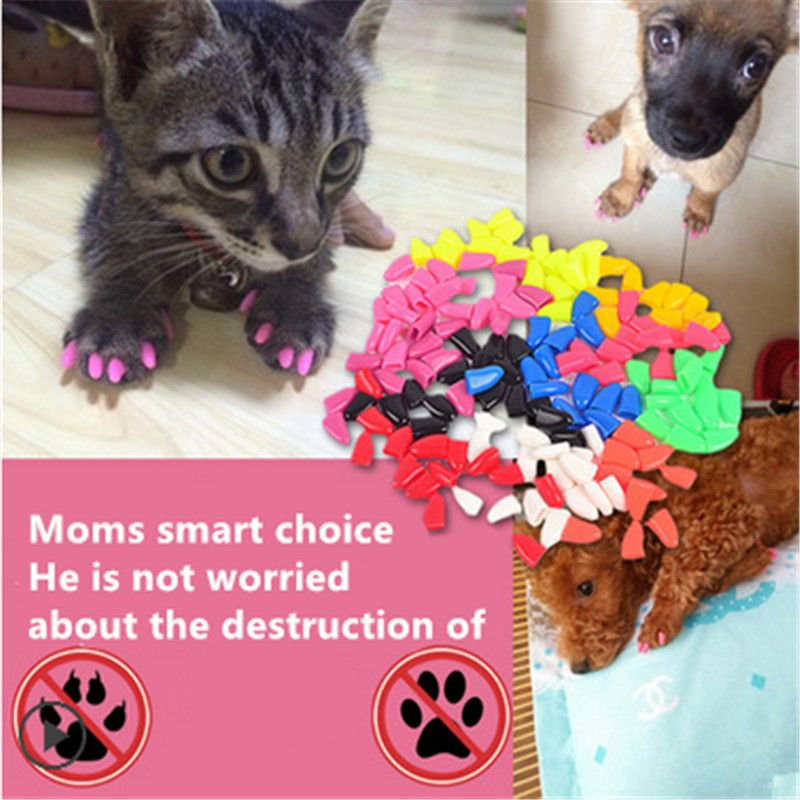 Soft Claws Cat Pet Nail Caps For Kittens Paws Grooming Cover Rubber ...