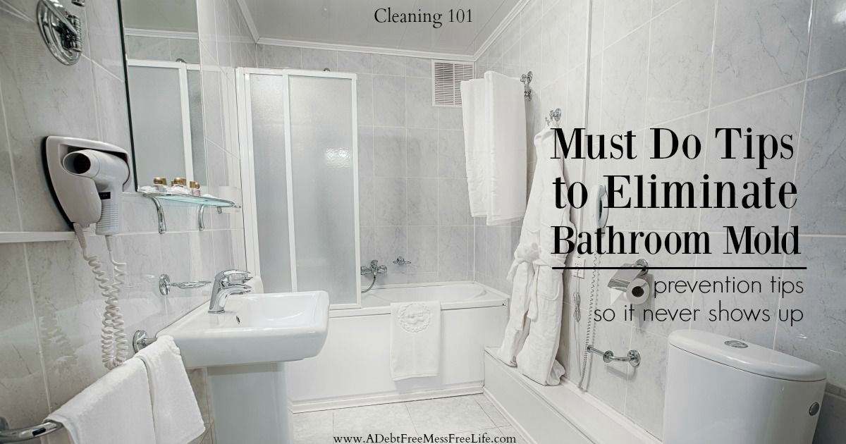 Must Do Tips To Eliminate Shower Mold | Shower mold, Mold ...