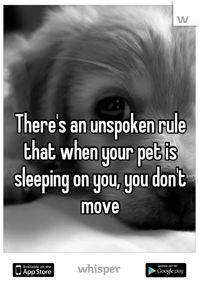 There S An Unspoken Rule That When Your Pet Is Sleeping On You You Don T Move Dog Quotes Dog Love Funny Animals