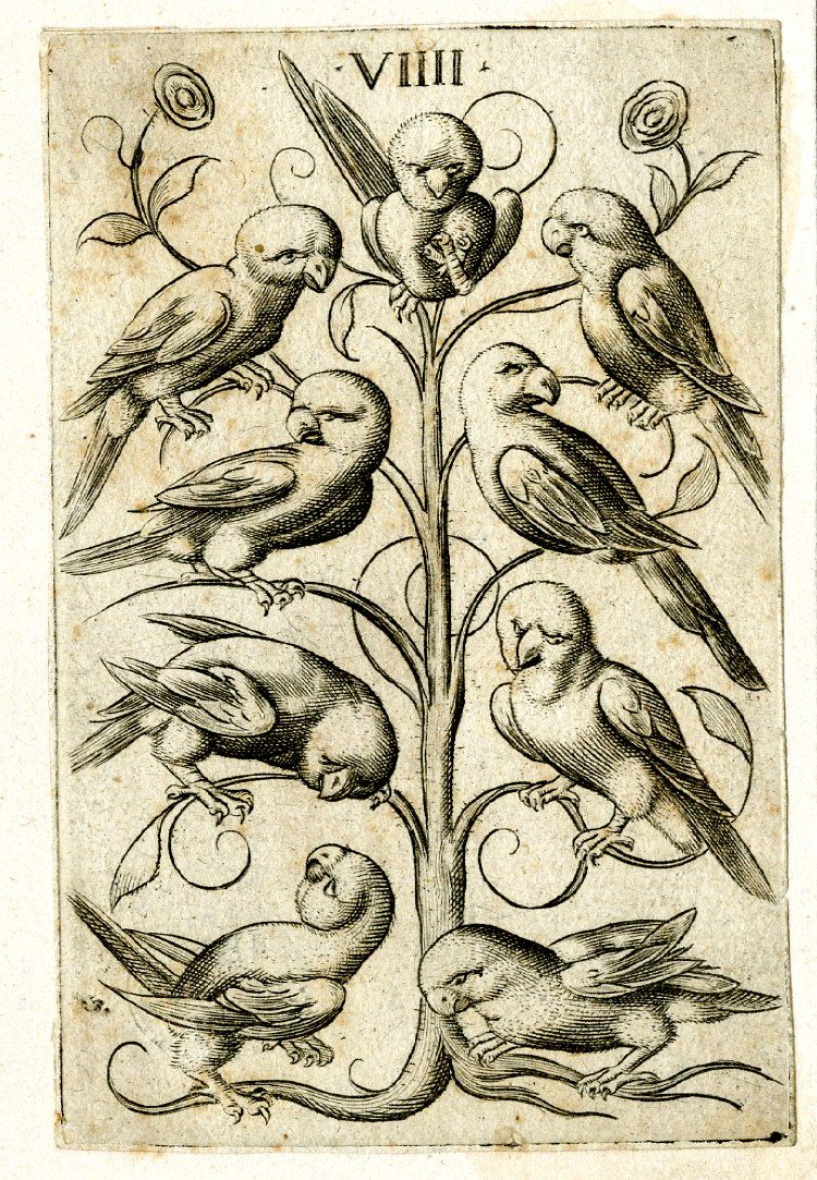 One playing-card, the 9 of parrots, from a pack of 52 German playing-cards designed and etched by Virgil Solis. The suits in this pack are parrots (for hearts), monkeys (for acorns), peacocks (for leaves), and lions (for bells). The pip cards in the various suits have their values in Roman numerals at the tops; the court cards are devoid of marks and inscriptions. On all the aces the title of the suit and monogram VS is placed. Etching Circa 1550-1575  |  britishmuseum.org