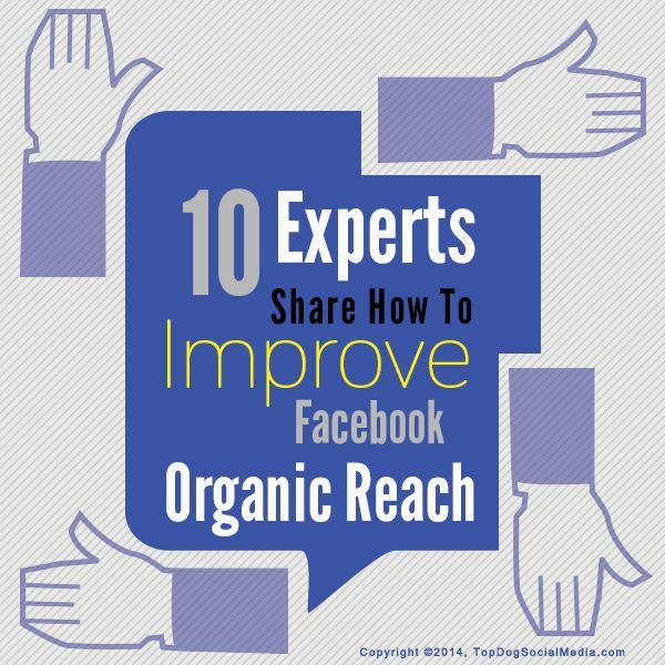 10 Experts Share How To Improve Facebook Organic Reach http://topdogsocialmedia.com/how-to-improve-facebook-organic-reach/?utm_content=bufferbf825&utm_medium=social&utm_source=pinterest.com&utm_campaign=buffer #wombizclub