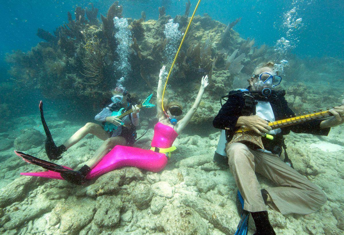 аквалангисты картинки смешные меня
