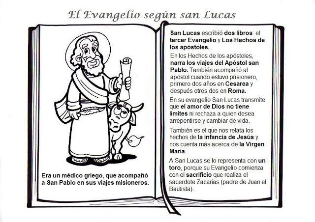 Evangelios Sinopticos Para Niños Buscar Con Google Evangelio Evangelio Catolico Catequesis