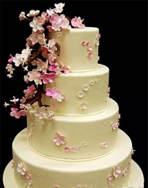Cheap 4 Layer Wedding Cake Decorating Ideas For All Beginners With     Cheap 4 Layer Wedding Cake Decorating Ideas For All Beginners With Cream  And Flower Embellishments