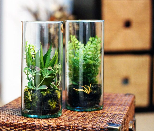 green all year faux terrariums willard and may outdoor living blog