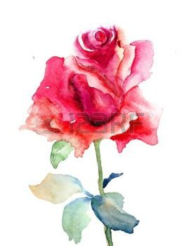 Stock Photo Peinture Fleurs Illustration Rose Et Illustration D