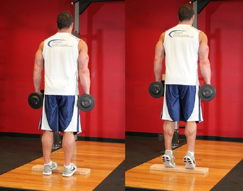 Standing Dumbbell Calf Raise To Develop Calf Muscles The Complete