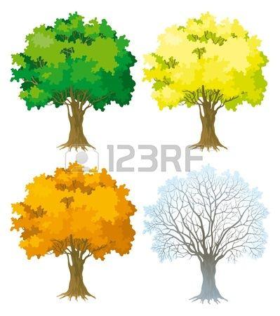 Árbol de cuatro árboles de las estaciones con el árbol verde, hojas