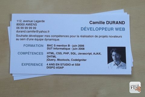 Mini Cv Modele Cv Etudiant Carte De Visite Developpeur Web
