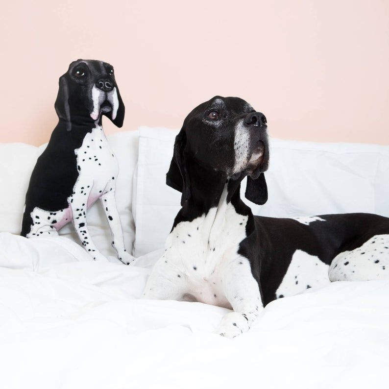 Gifts for Pets and Pet Lovers | Bellwether Events