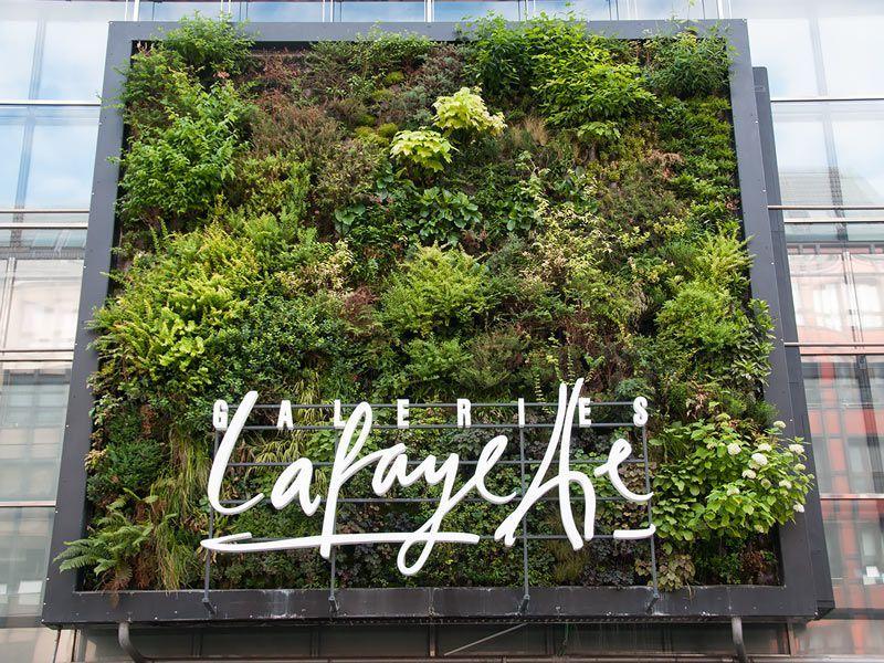 Simple Vertikaler Garten Friedrichstrasse Berlin Galeries Lafayette von Patrick Blanc