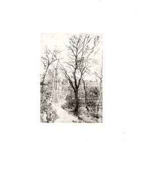 Ensor James : Gravure originale : Sentier à Groenendael 1888 Gravure originale, eau-forte, non signée.