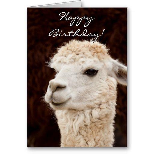 Happy Birthday llama greeting card | Zazzle.com | Happy ...