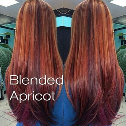 Apricot Awesomeness Hair Hair Everywhere Pinterest Hair