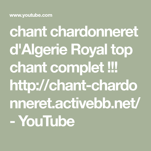 chant chardonneret dalgerie royal top chant complet