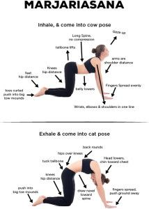 Marjaryasana Bitilasana Cat Cow Pose Yoga Sessioni Di