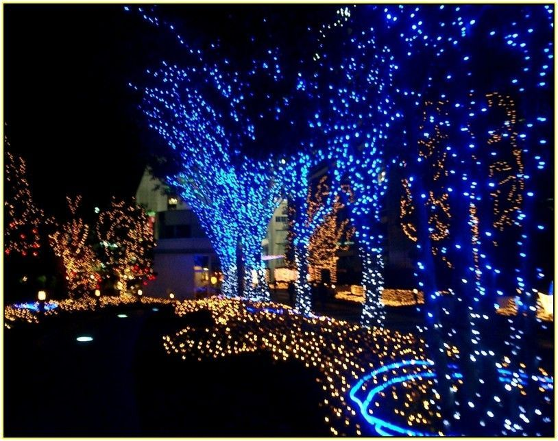 Outside Led Christmas Lights With Others Blue Led Outdoor Christmas