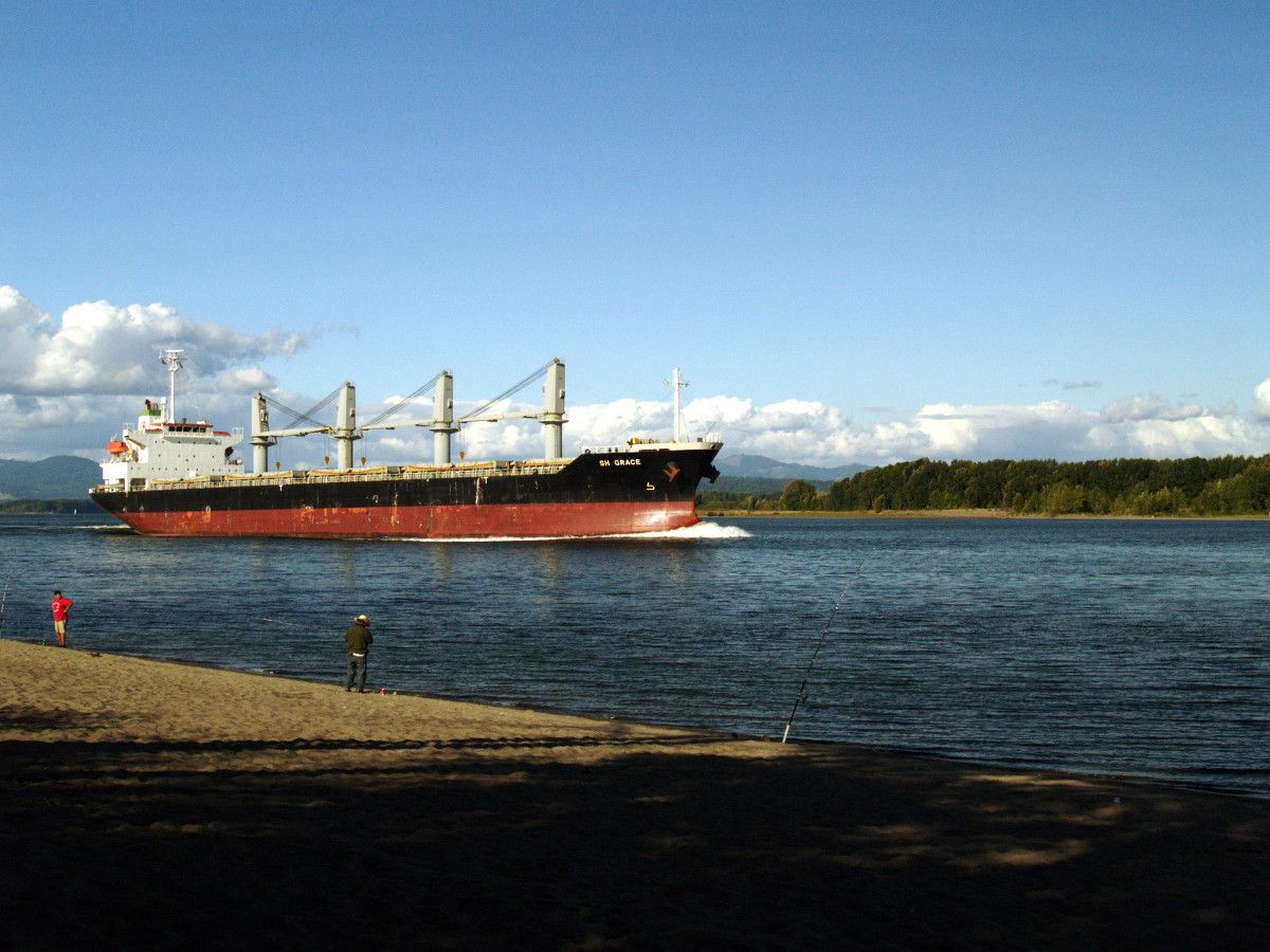 Sauvie Island is a terrific place to watch big ships as ...