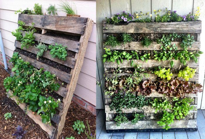 Verticale tuin van paletten ideeen pinterest tuin palet tuin