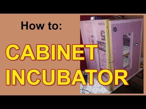 How To Cabinet Incubator 240 Quail Egg Incubator Youtube In 2020 Egg Incubator Quail Quail Eggs