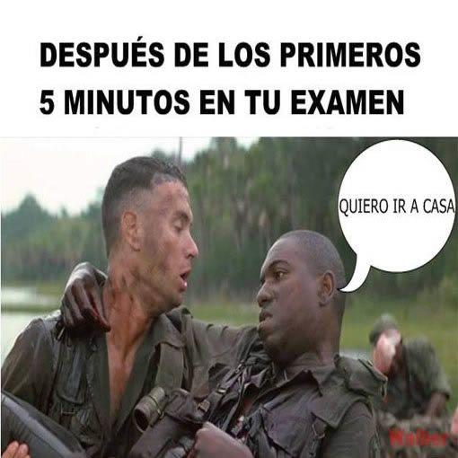 Image result for memes para examenes finales