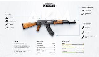 According to our list of the latest Assault Rifle PUBG