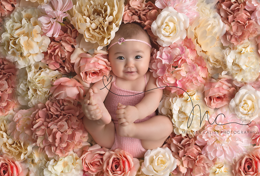 Melissa Calise Photography Photographer Ideas Beautiful Baby Girl Flowers Pink White Knit Ro Baby Girl Photography Baby Photography 6 Month Baby Picture Ideas