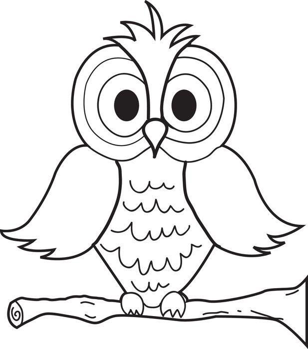 owl coloring pages preschool mit bildern  malvorlage