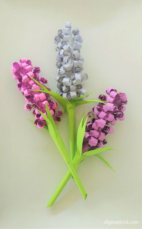 Diy curled hyacinth paper flowers pinterest recycle paper paper diy curled hyacinth paper flowers a great project to do on your own or with the kids to celebrate the upcoming spring use recycled paper for a unique and mightylinksfo