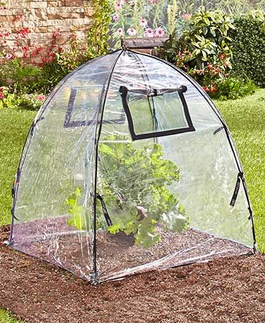 The Perfect Pop-Open Plant Protection guards your garden when youu0027re not around. The pop-up protection tent has a lightweight fiberglass frame and is easy ... & Perfect Pop-Open Plant Protection | Landscape Design u0026 Curb Appeal ...