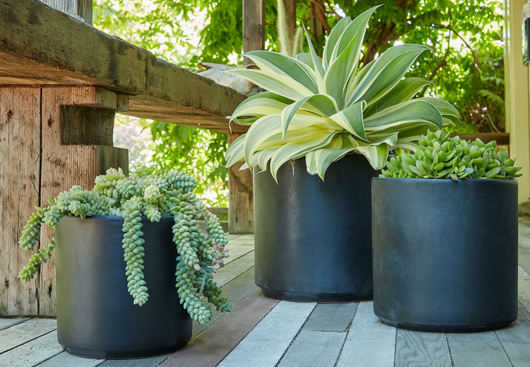 Cylinder Ceramic Pots And Planters Flora Grubb Gardens Planters Planter Pots Ceramic Pots