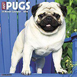 Just Pugs 2018 Wall Calendar Dog Breed