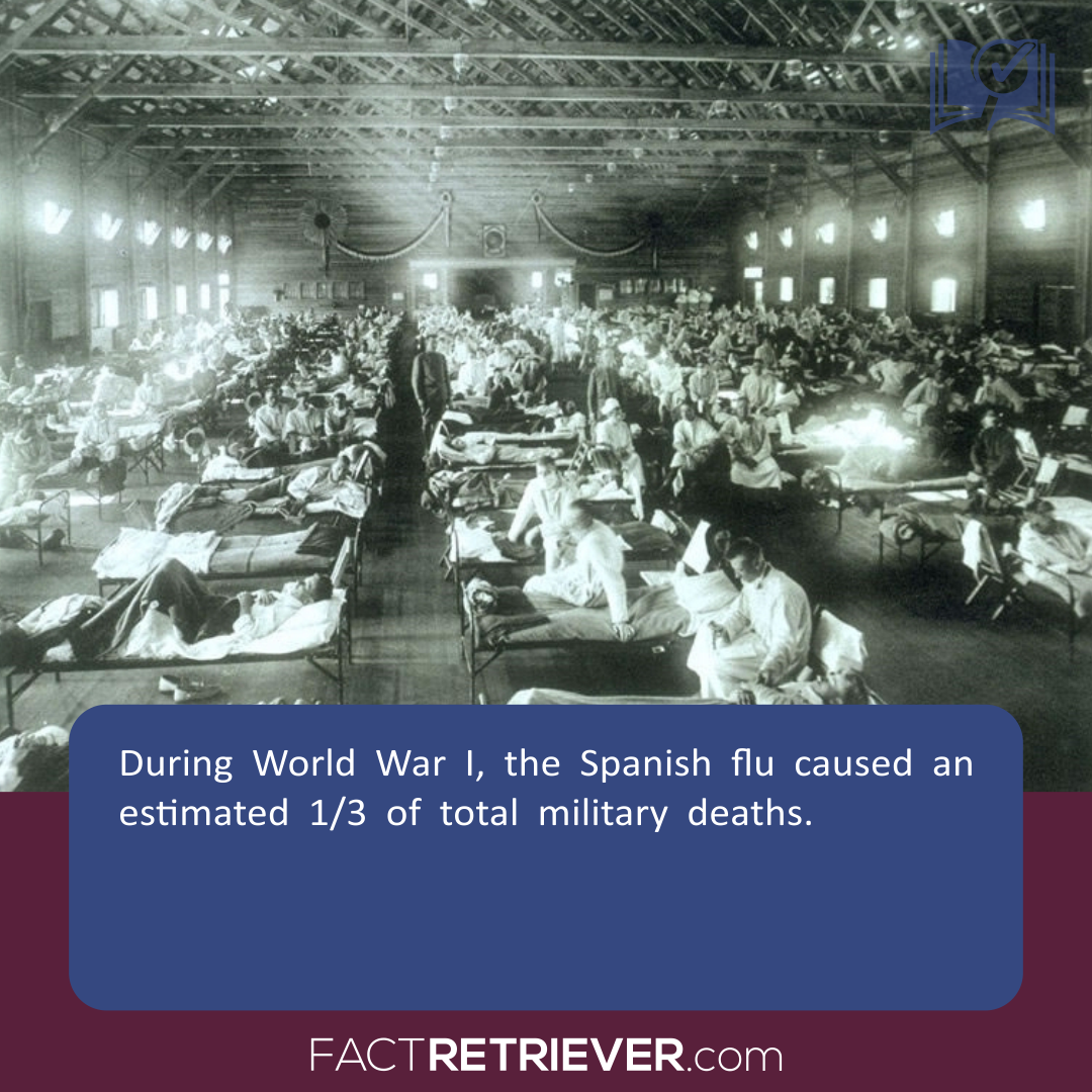 World War I helped spread one of the world's deadliest global pandemics,  the Spanish flu epidemic of 1918, which killed between 20 to 50 million  people.