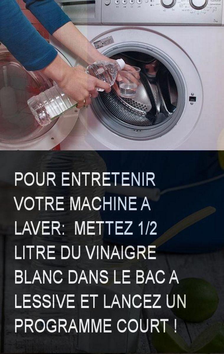 Entretien Machine A Laver comment éliminer les moisissures dangereuses et les odeurs