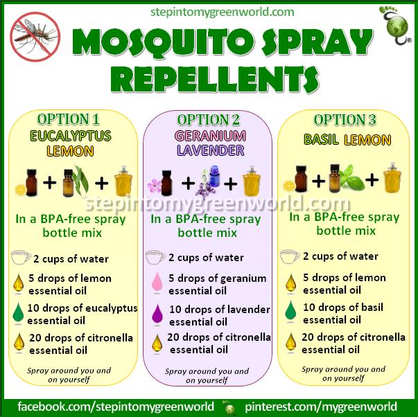 Mosquito Spray Repellants Love Basil Lavender Lemon