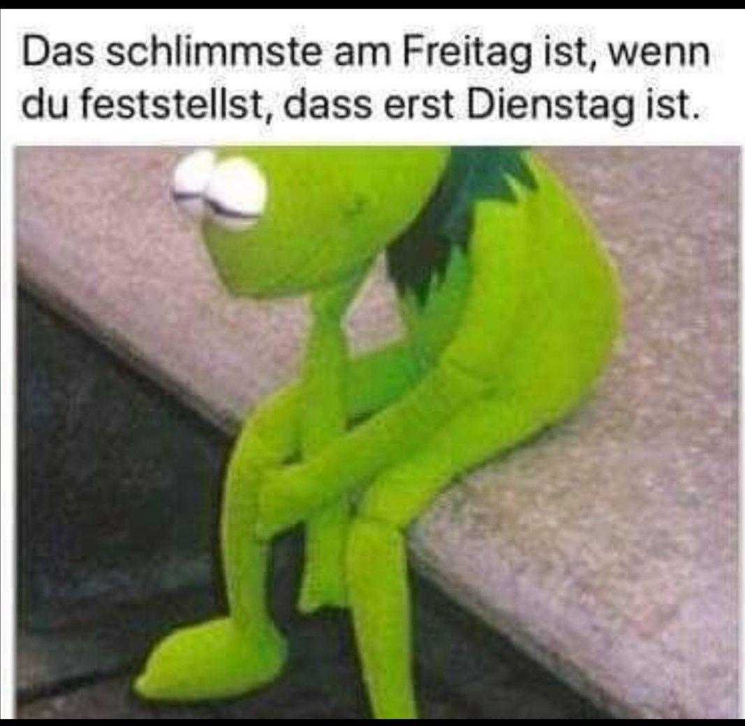 Freitag Lustig Witzig Spruche Bild Bilder Freitag Spruche Lustig