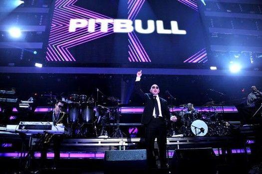 Pitbull fue introduce en 2001 a artistas famosos porque su talento. Él hecho álbumes después y se convirtió famoso!!
