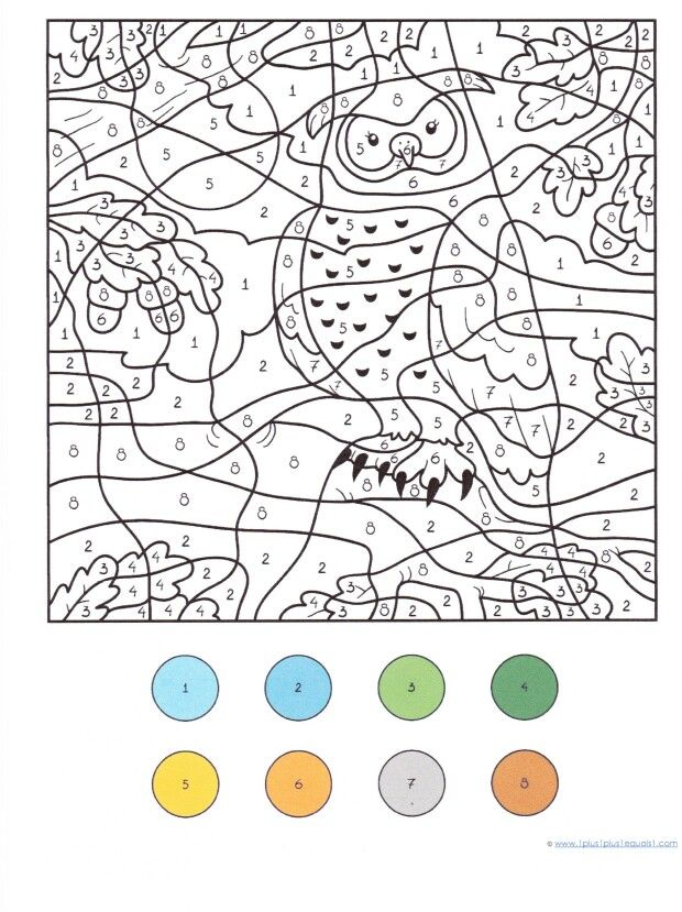Owl Color By Numbers Owl Coloring Pages Coloring Pages Colouring Printables
