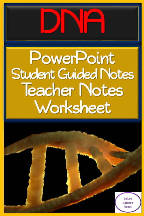 DNA PowerPoint, illustrated Student Guided Notes, TWO