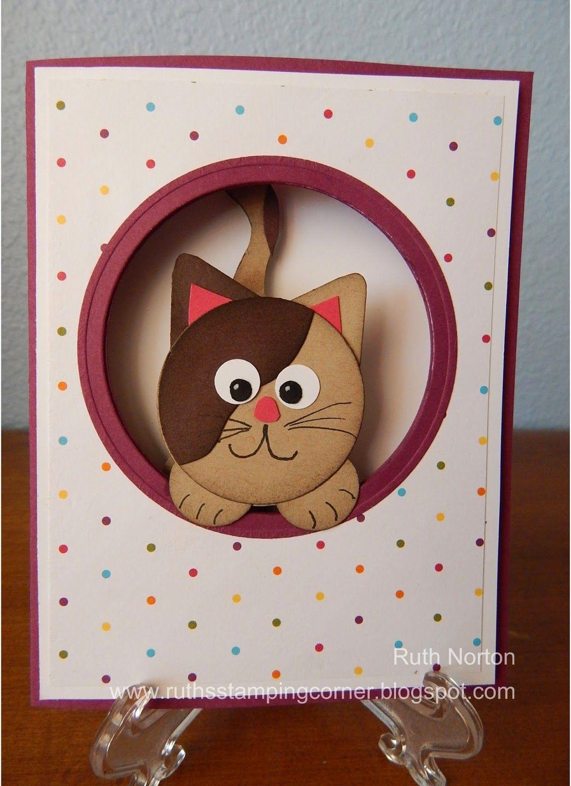 cartao gato