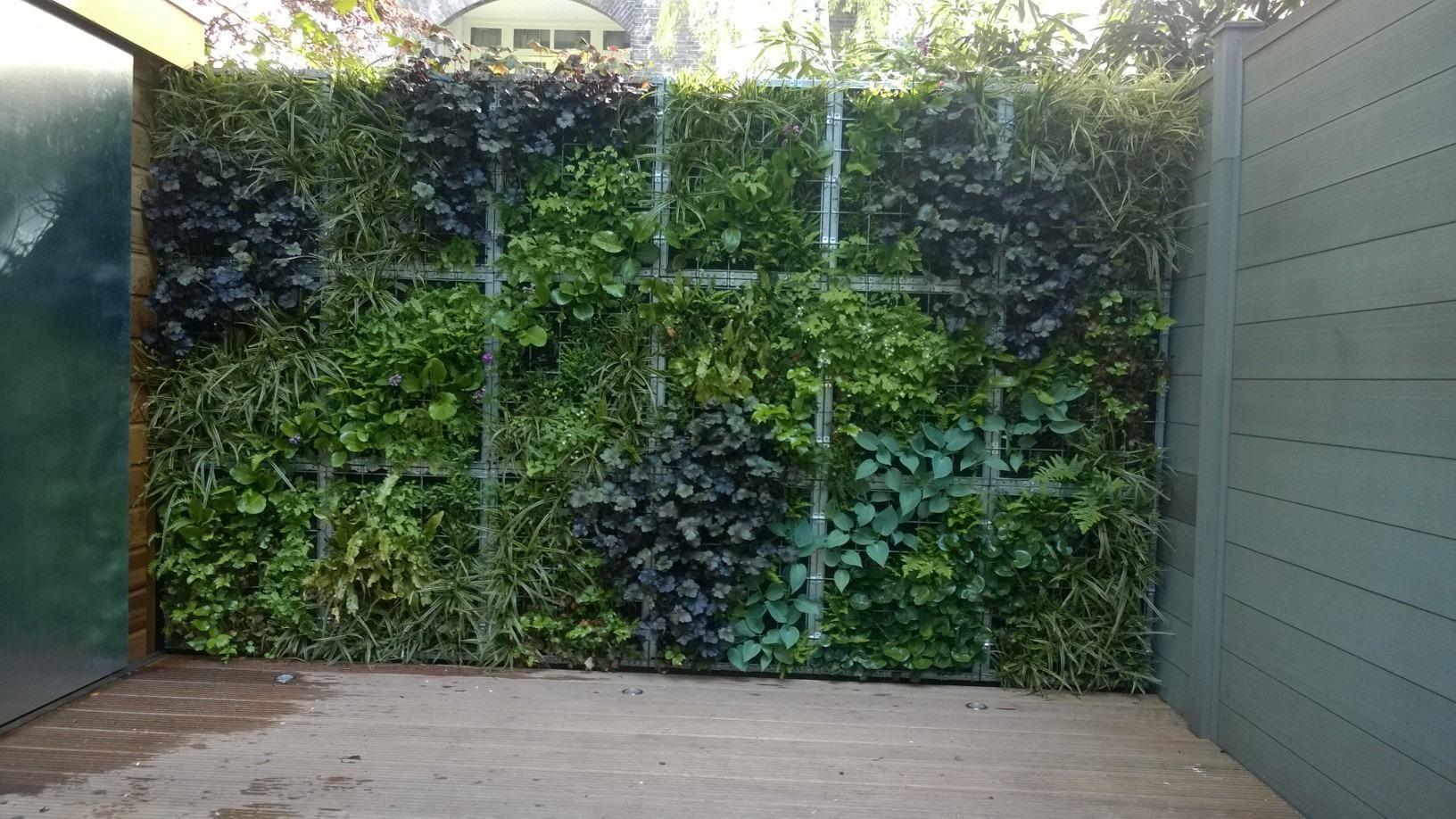 Planting wall verticaal tuinieren gevel groen patio pinterest moderne tuinen tuinen en - Bamboe hek ...