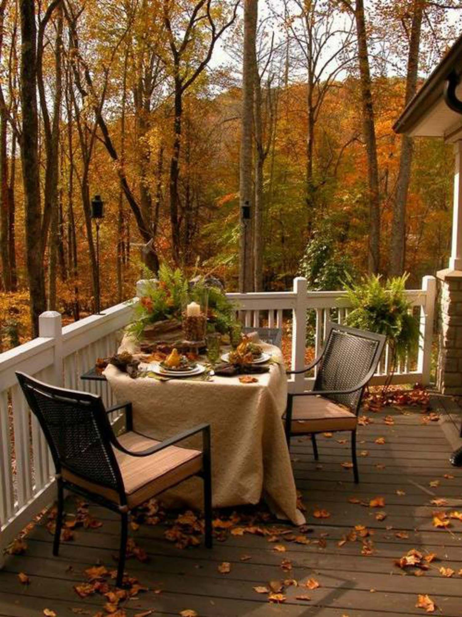 25+ Fall-inspired outdoor living spaces that are u