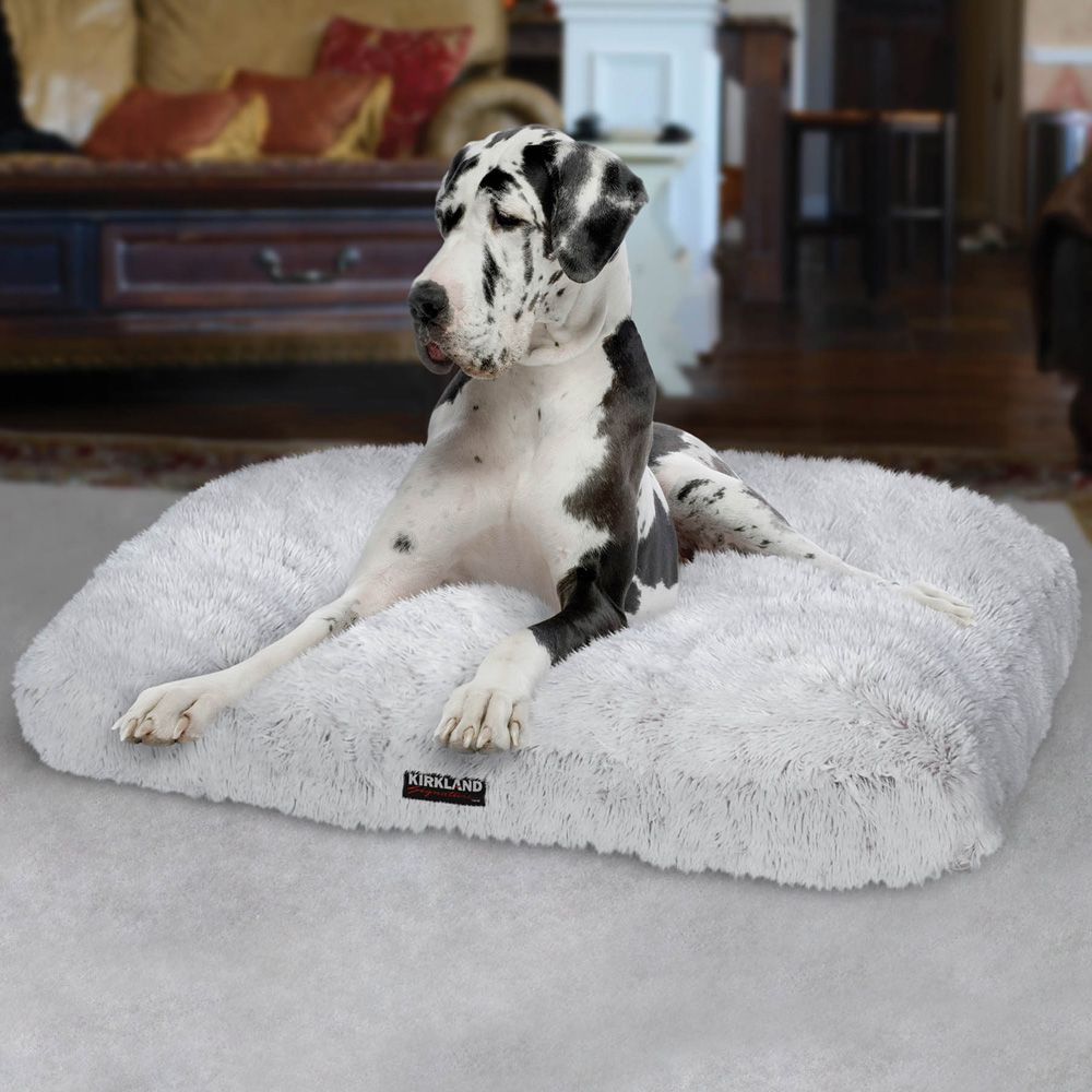reviews item chickadvisor dog products gallery bed in costco pet image beds kirkland